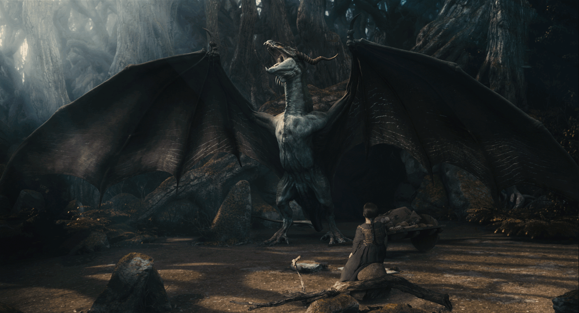 Dragons 3D: Real Myths and Unreal Creatures